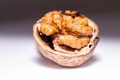Nut Stock Photography
