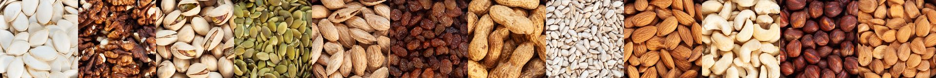 Nut collection. A collection of raisins, cashews, apricot seeds, walnuts, sunflower seeds, hazelnuts, pumpkin seeds, peanuts and almonds in square shape, top royalty free stock photos