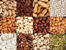 Nut collection. A collection of raisins, cashews, apricot seeds, walnuts, sunflower seeds, hazelnuts, pumpkin seeds, peanuts and almonds in square shape, top royalty free stock photography