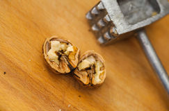 Nut crack lying near metal hammer Stock Images