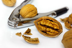 Nut Cracker. Photo of a nut cracker and nuts isolated in white stock image