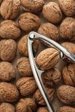 Nut Cracker Stock Photography