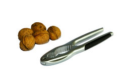 Nut Cracker and walnuts Royalty Free Stock Image