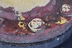 Nut dyed spun. Metal design royalty free stock photos