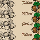 Nut filbert. Hand drawing set of vector sketches Stock Photo