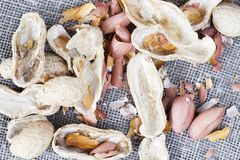 Nut fresh clean. Broken and peeled peanuts with shells, edible part without shells and ready for ingestion, lies a linen tablecloth in the kitchen stock image