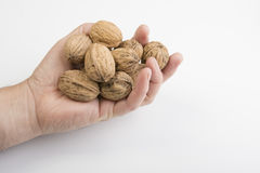 Nut fruit. Some nuts on the hand royalty free stock photos