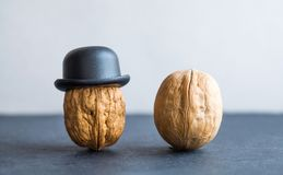 Nut with gentleman walnut black hats on stone background. Creative food design poster. Macro view selective focus photo. Nut gentleman walnut black hats on Stock Image