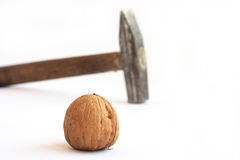 Nut and hammer Stock Photo