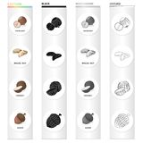 Nut, hazelnut, brazil nut, and other web icon in cartoon style.Peel, delicacy, treats icons in set collection. Nut, hazelnut, brazil nut, and other  icon in Royalty Free Stock Images