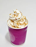 Nut ice cream Stock Image