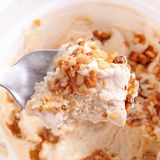 Nut ice cream Royalty Free Stock Image