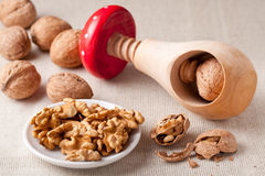 Nut kernels in plate, walnuts, nutcracker Stock Photography