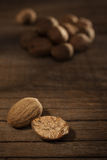 Nut meg Royalty Free Stock Photos