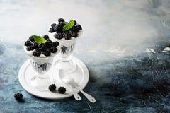 Nut milk dessert with blackberries Royalty Free Stock Photography