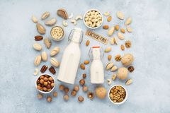 Nut milk and various nuts. Lactose free milk substitute stock images