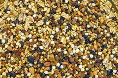 Nut mix pattern Stock Photography