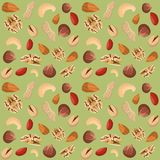 Nut mix seamless pattern Stock Images