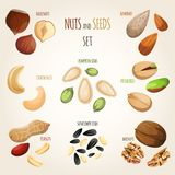 Nut mix set Stock Photo
