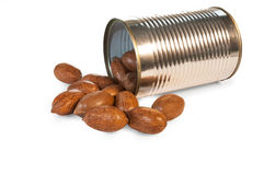Nut Royalty Free Stock Photography
