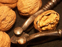 Nut and - nutshell Royalty Free Stock Photo