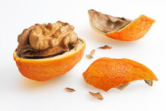 Nut with orange peel. Photo manipulation: broken nut surrounded by an orange peel Stock Image