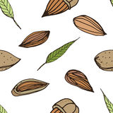 Nut seamless on white background. Hand drawn colorful pattern with almond. Royalty Free Stock Photography