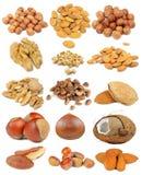 Nut Set Isolated on White Background Royalty Free Stock Photography