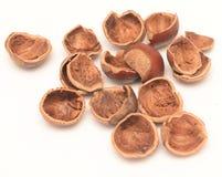 Nut shell Royalty Free Stock Photos