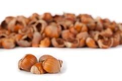 Nut shells Stock Photos