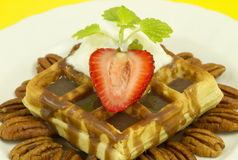 Nut Strawberry Waffle Front View. Waffle with chocolate fudge, whipped cream, pecan nuts and strawberry seen from teh front. Studio lights and 100mm macro lens Stock Image