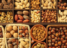 Nut types Royalty Free Stock Photo