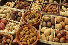 Nut types Stock Images