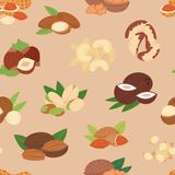 Nut vector nutshell of hazelnut or walnut and almond nuts set nutrition with cashew peanut and chestnuts nutmeg. Illustration isolated on seamless pattern Royalty Free Stock Photo