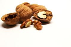 Nut. Walnuts. Chopped nuts. Nuts and shells of walnuts. A useful product. A caloric product. Walnuts. Nuts, kernels and walnut shells on a white background stock image