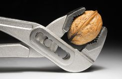 Nutcracker #1a. Opening a walnut with a gripper Stock Photo