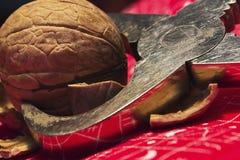 Nutcracker. A walnut with shells in a nutcracker Royalty Free Stock Photography