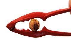 A nutcracker with an almond. A nutcracker cracking an almond Royalty Free Stock Photo
