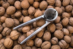 Nutcracker for cracking walnuts royalty free stock photo