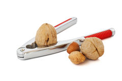 Nutcracker and nuts Stock Image