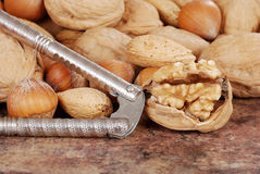 Nutcracker with nuts Stock Photography