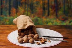 Nutcracker and Nuts Stock Images