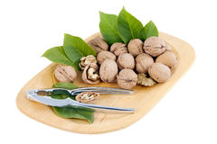 Nutcracker and nuts in the bowl. Royalty Free Stock Image