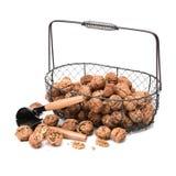 Nutcracker with walnut Stock Images