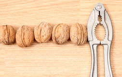 Nutcracker and walnut Stock Images