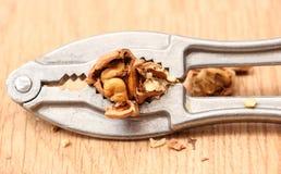 Nutcracker and walnut Stock Photos