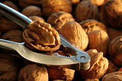 Nutcracker with Walnuts Stock Photos