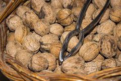 Nutcracker and walnuts in the basket. A set of nuts im a wooden basket Royalty Free Stock Photo