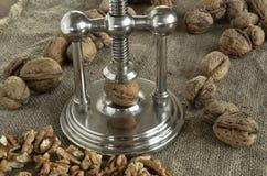 Nutcracker walnuts Royalty Free Stock Photo