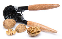 Nutcracker with walnuts Stock Photography